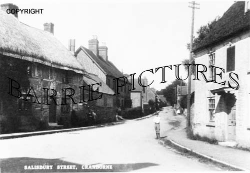 Cranborne, Salisbury Street c1910