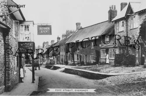 Evershot, Fore Street c1910