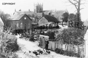 Okeford Fitzpaine, The Village c1920