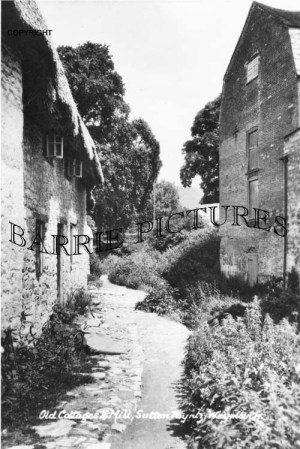 Sutton Pointz, Old Cottage and Mill c1910