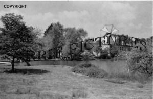 Cann, The Mills c1960