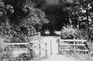 Bockhampton, the Path c1890