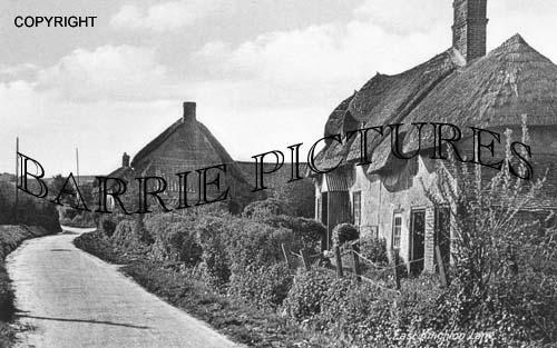 East Knighton, the Lane c1930