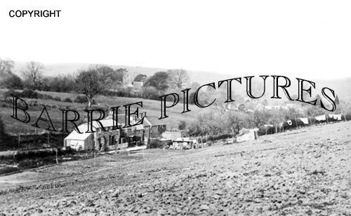 Berwick St John, Village c1900