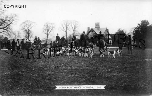 Blandford, Lord Portmans Hounds c1910