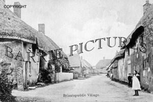 Briantspuddle, Village c1890