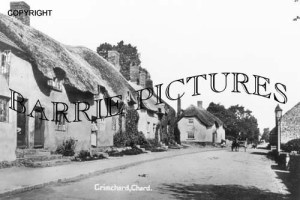 Chard, Grimchard c1910