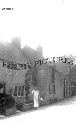 Horsington, The Bakery June 1916