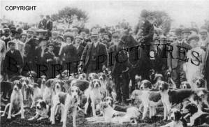 Cloutsham, Devon and Somerset Staghounds c1900