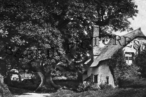 Bossington, c1910