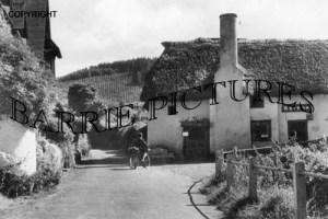 Luccombe, c1950