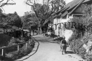 Luccombe, Village c1930
