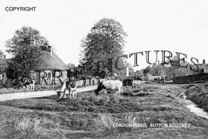 Sutton Scotney, London Road c1905
