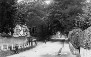 Basingstoke, London Road c1905