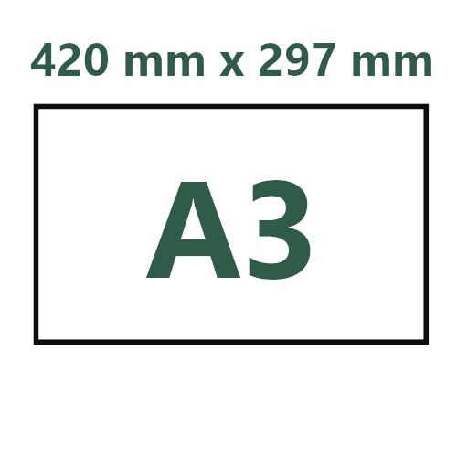 A3. 420 mm x 297 mm