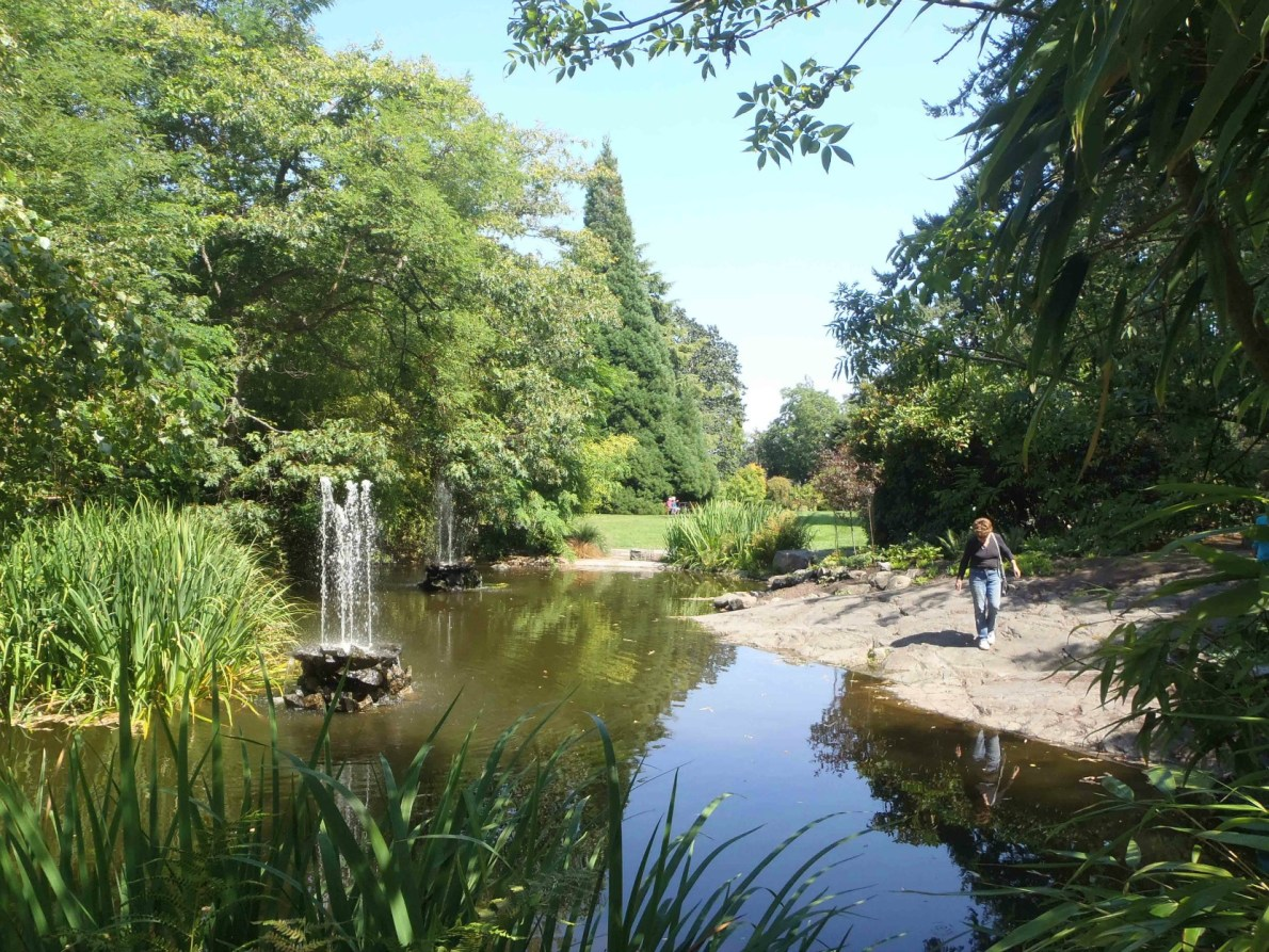 Duck Pond, Government House, 1401 Rockland Avenue (photo by Victoria Online Sightseeing Tours)