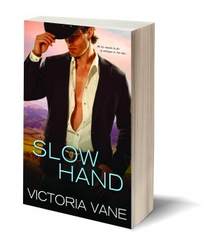 Slow Hand Paperback