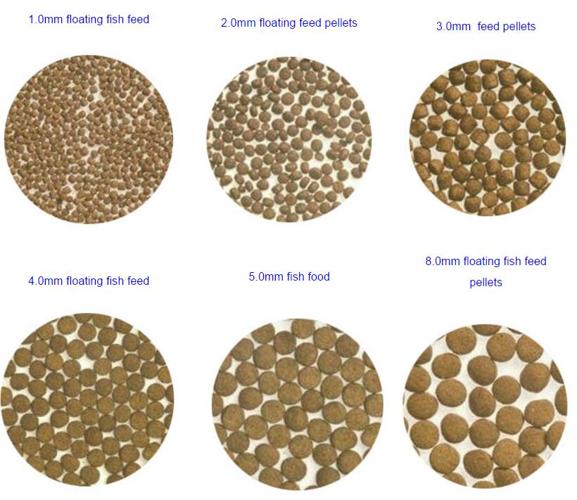 how to make fish feed pellets