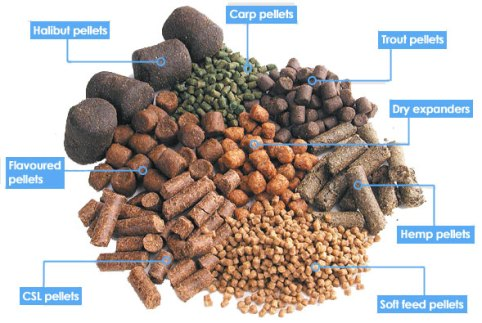 how to make pig feed pellets