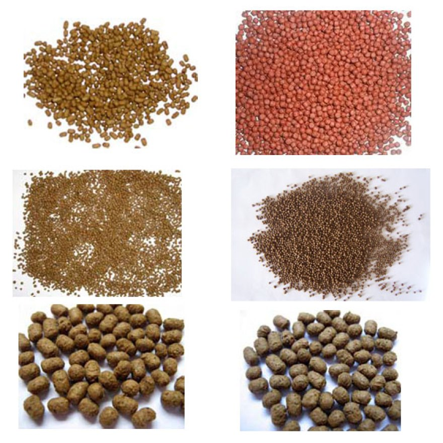 floating fish feed procesing line