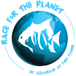 5K Race for the Planet, Kure Beach