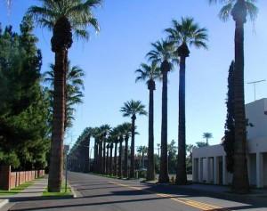Phoenix-EUA