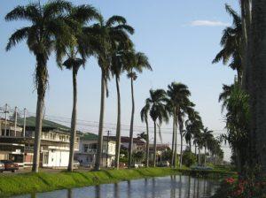 Nieuw Nickerie - Suriname