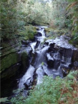 Cachoeira Begalke - Benedito Novo - SC