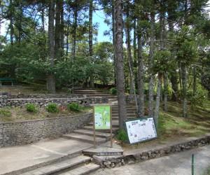 Parque do Caracol - Canela - RS