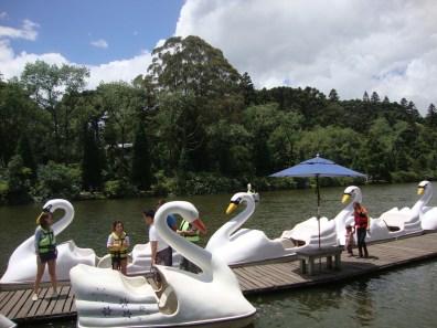 Pedalinhos - Lago Negro - Gramado - RS