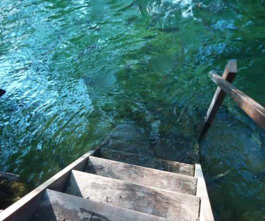 Entrando na água - Balneário Municipal