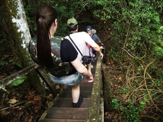 Escadaria - Estância Mimosa