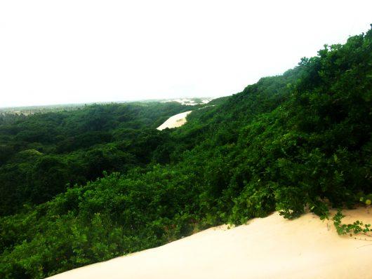Dunas Praia do Saco - Estância - SE
