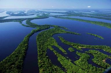 Parque Nacional de Anavilhanas - Manaus - AM