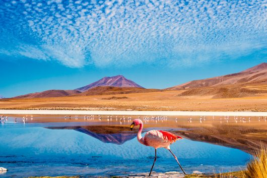 Pacote Santiago e região dos lagos