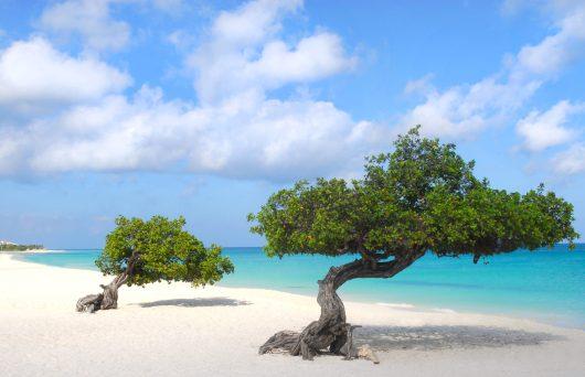 Férias de julho no Caribe 2020 - Aruba