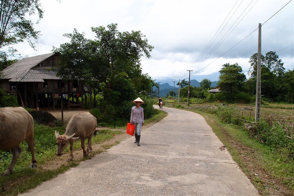 Honda CRF 250 en Vietnam rural