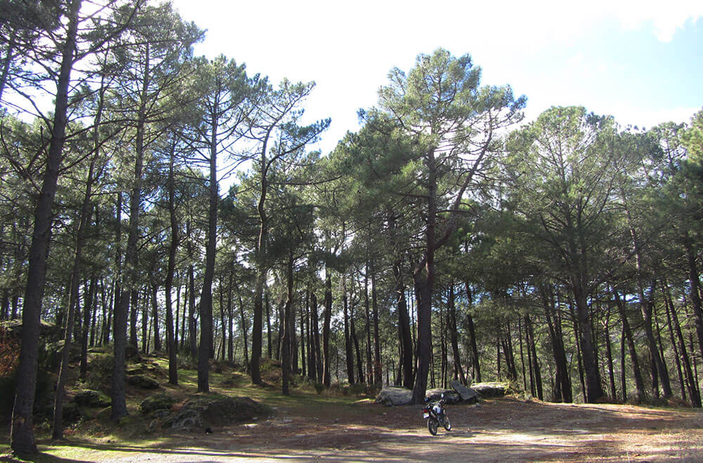 Moto trail en Casillas