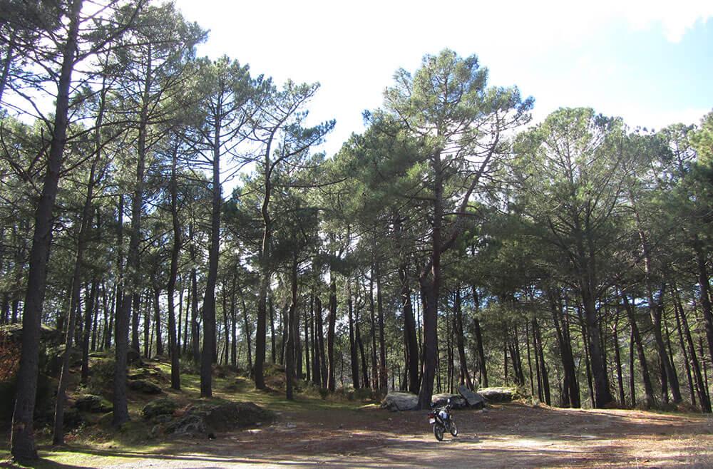 Moto trail en Casillas