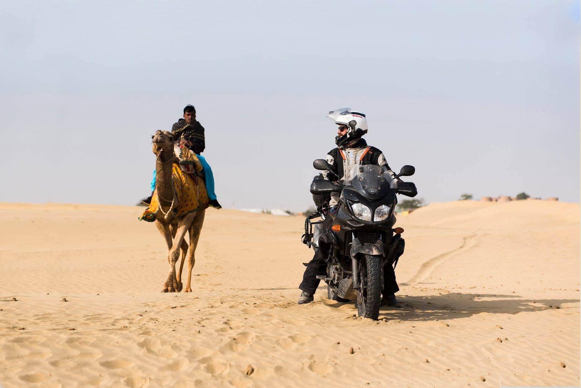 En el desierto - wildfeathers