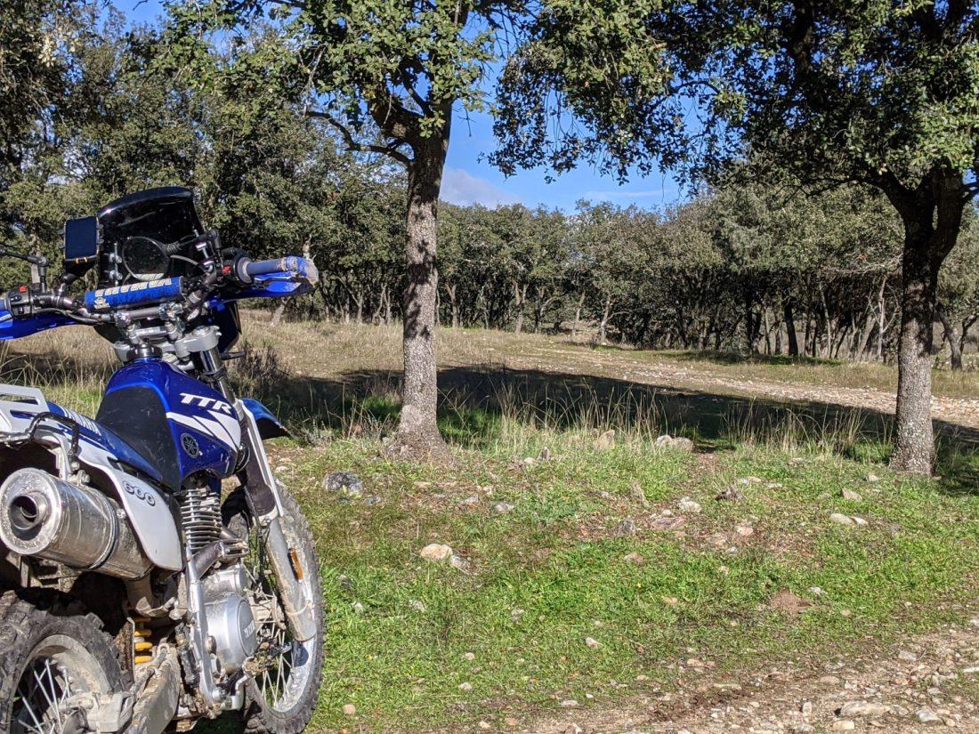 Yamaha TTR 600 RE posado en el campo