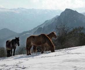 Зима в Испании