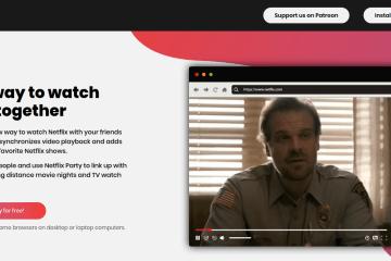 Como ver Netflix con tus amigos en Linea