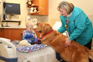 Animais de estimação auxiliam crianças com câncer