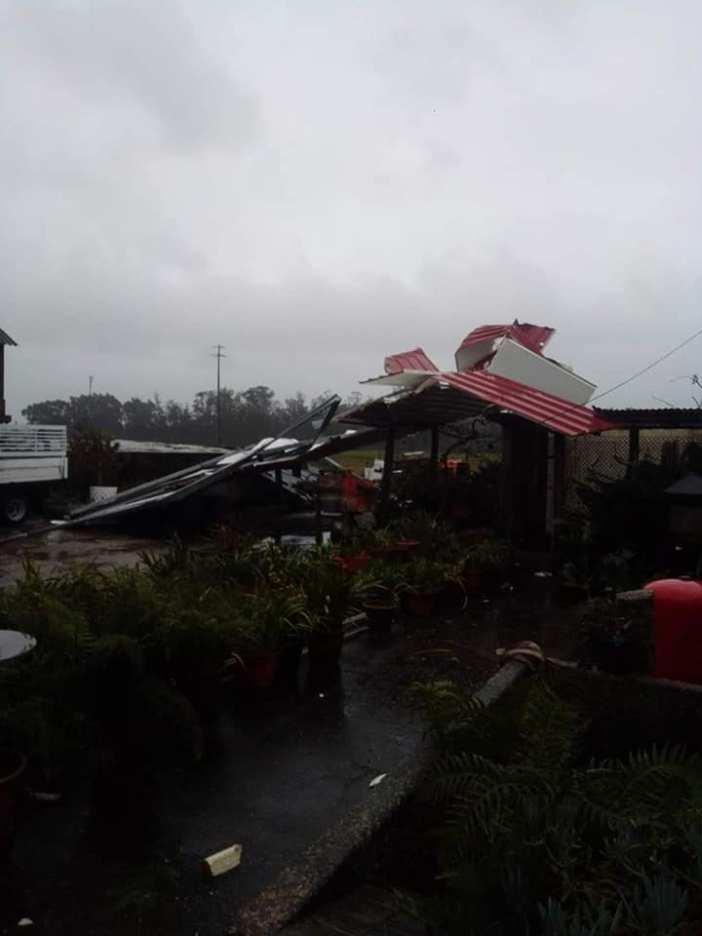 Tempestade Elsa provoca prejuízos elevados em vacarias de Vila do Conde