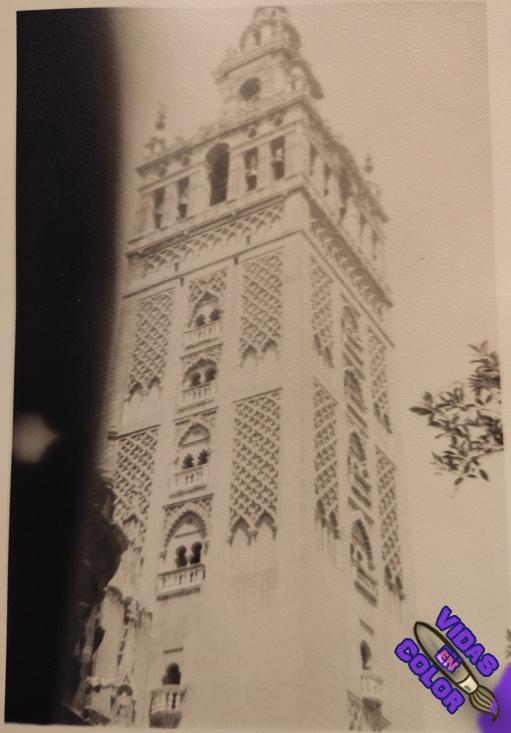 torre_giralda_catedral_sevilla_byn