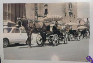carruajes_de_caballos_color