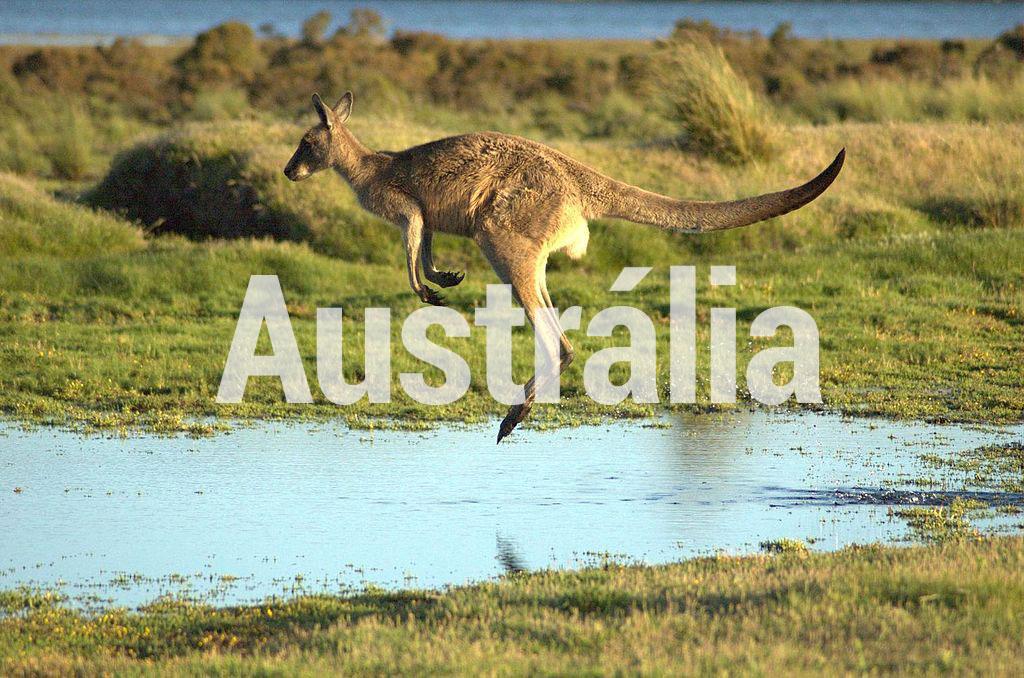 Sobre a Austrália/Sydney