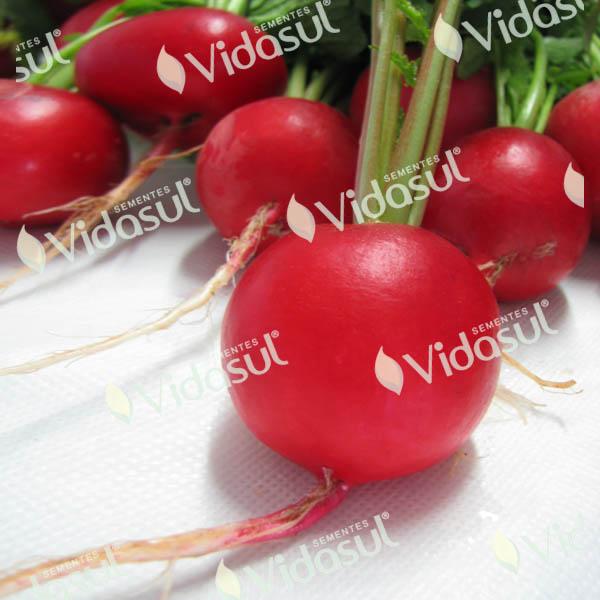 Rabanete Crimson Viper