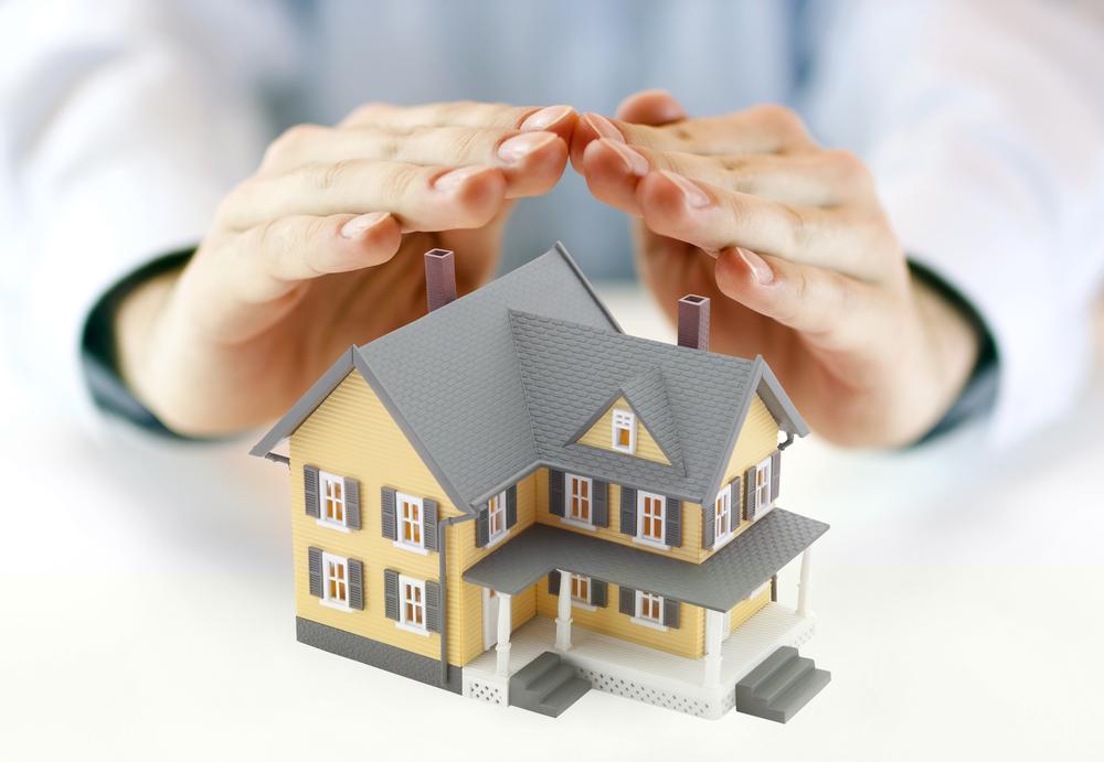 vidati-immobilier